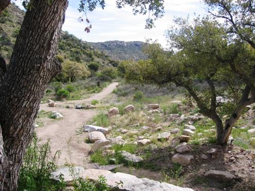 Molino Basin