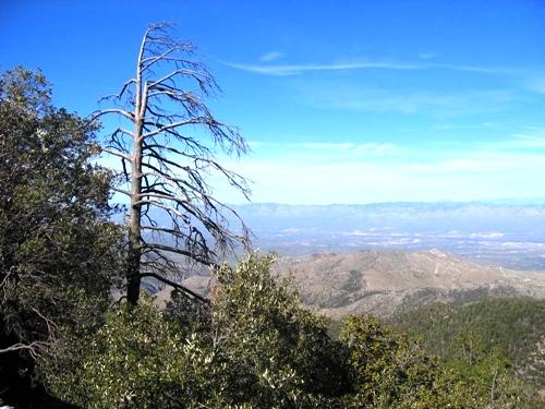 San Pedro Vista
