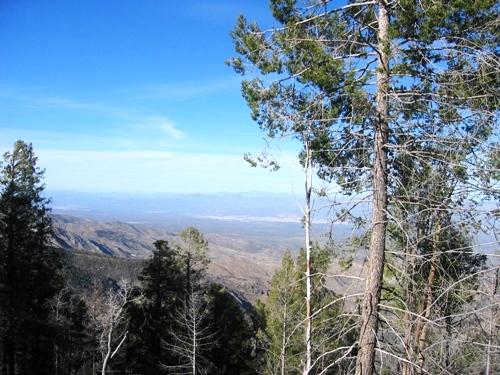 Aspen Vista