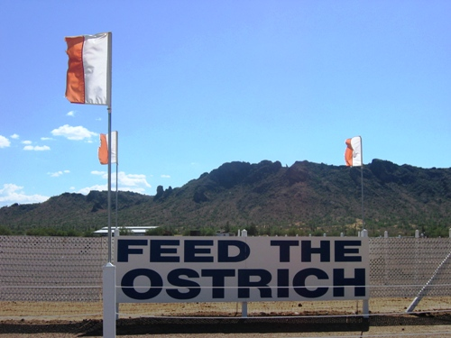 Feed the Ostrich! for a little while longer.