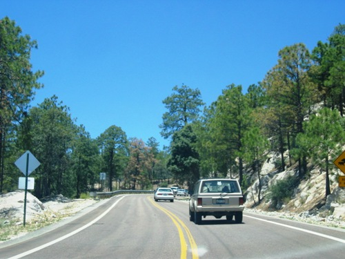 Mount Lemmon is cooler, but you're part of a crowd driving up there.